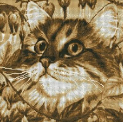 Котки0