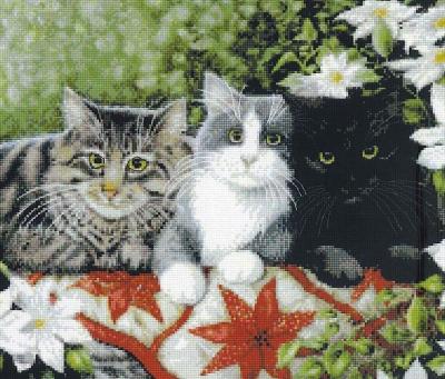 Котки1