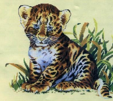 Котки13