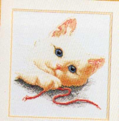 Котки21