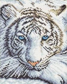 Котки32