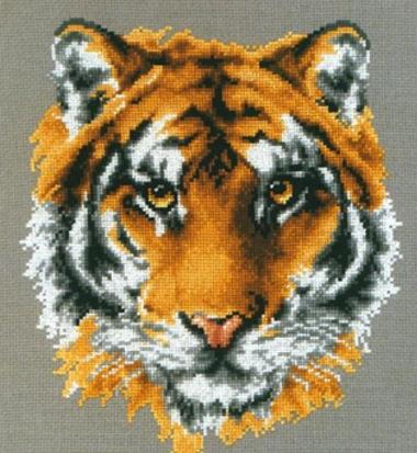 Котки52