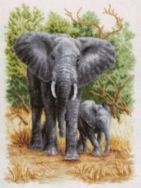 Слонове12