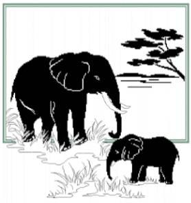 Слонове14