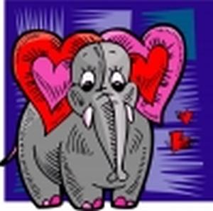 Слонове16