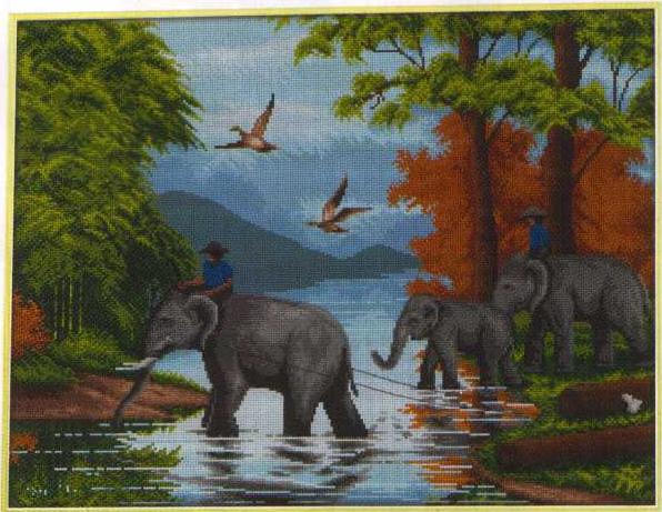 Слонове3
